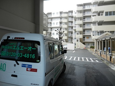 2403182.jpg